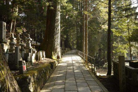 Trekking lungo le vie del Kumano Kodo