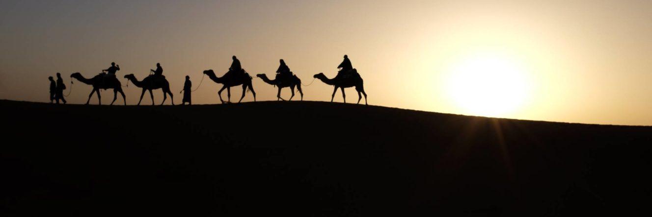 Carovana di dromedari nel deserto