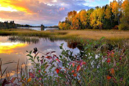 La sconfinata natura del Québec